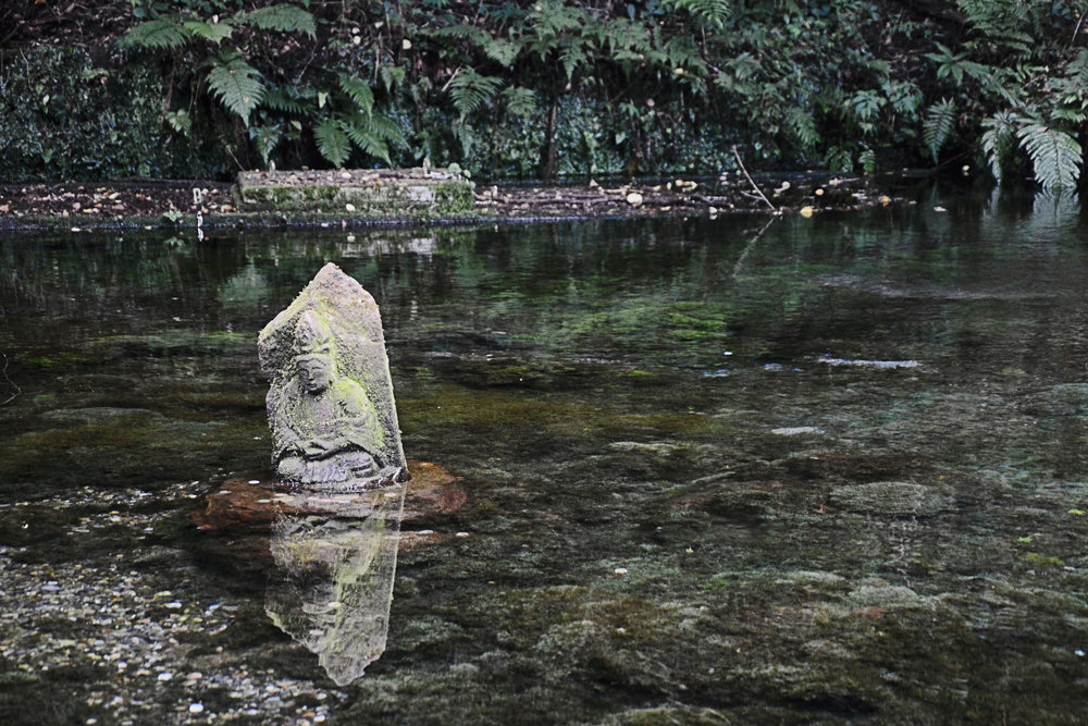 Clear water at Ikeyama Suigen spring
