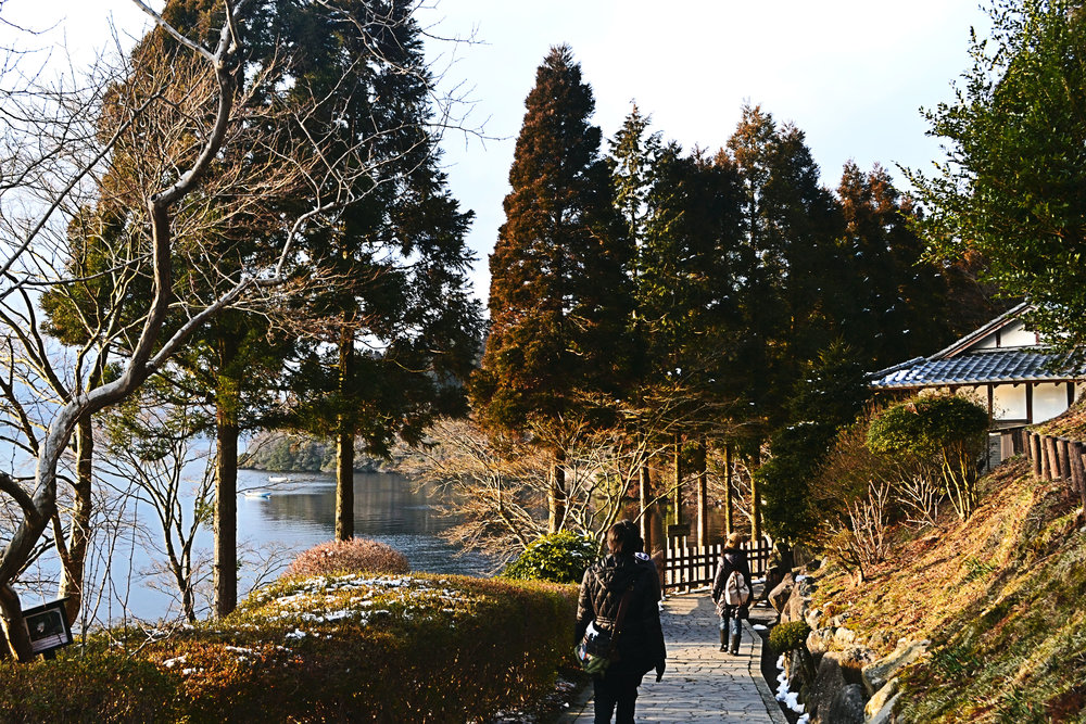 Afternoon walk around Motohakone