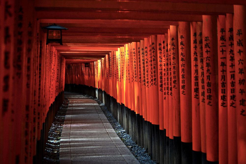 Path at Fushimi Inari shrine in Kyoto