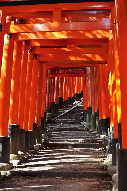The walk at Fushimi Inari shrine in Kyoto