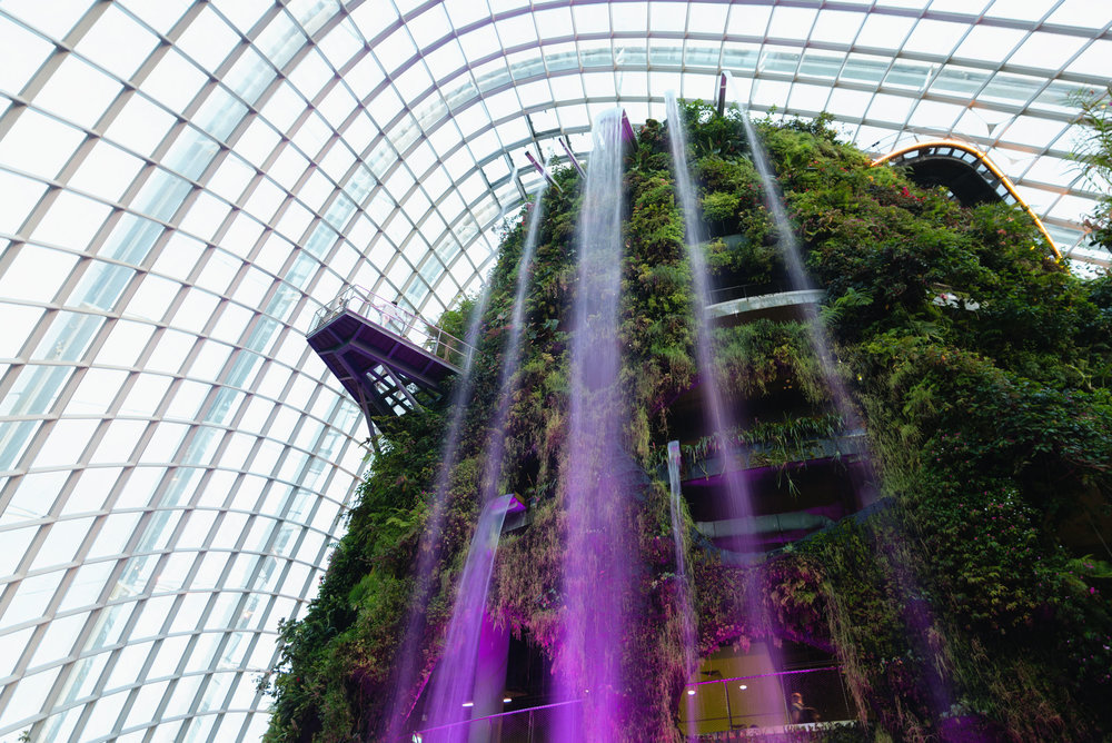 Waterfall at the Gardens by the Bay's Cloud Forest