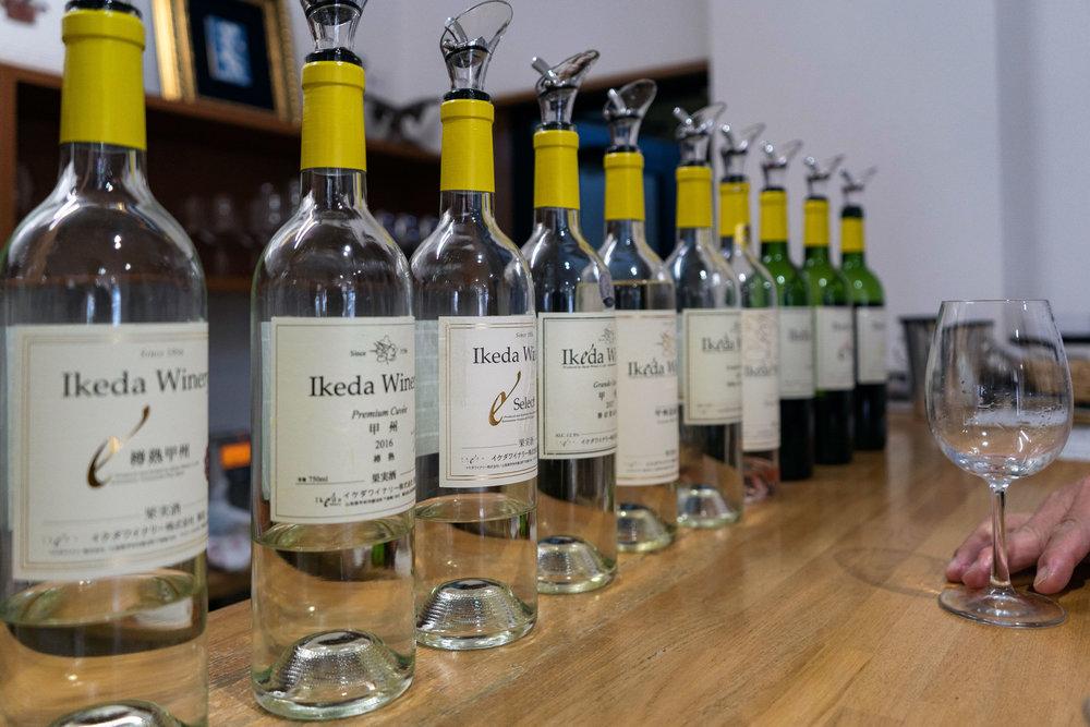 Wine tasting at Ikeda Winery in Katsunuma, Yamanashi