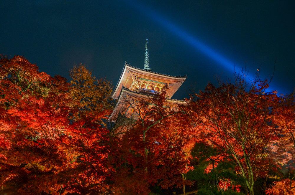 Fall leaves at Kiyomizudera in Kyoto- [  BUY PRINT   - Enter KYOTOFALL for 10% off]