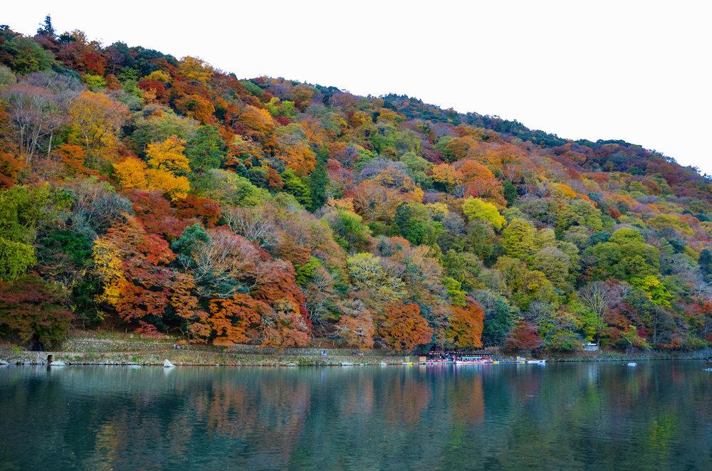 Fall leaves on the Arashiyama riverside in Kyoto