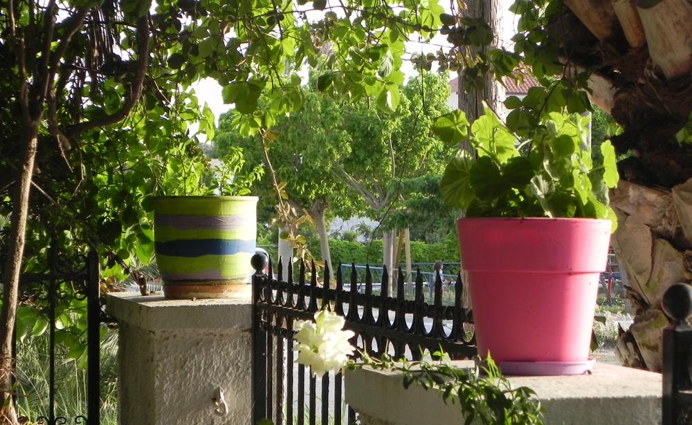Ulysses garden