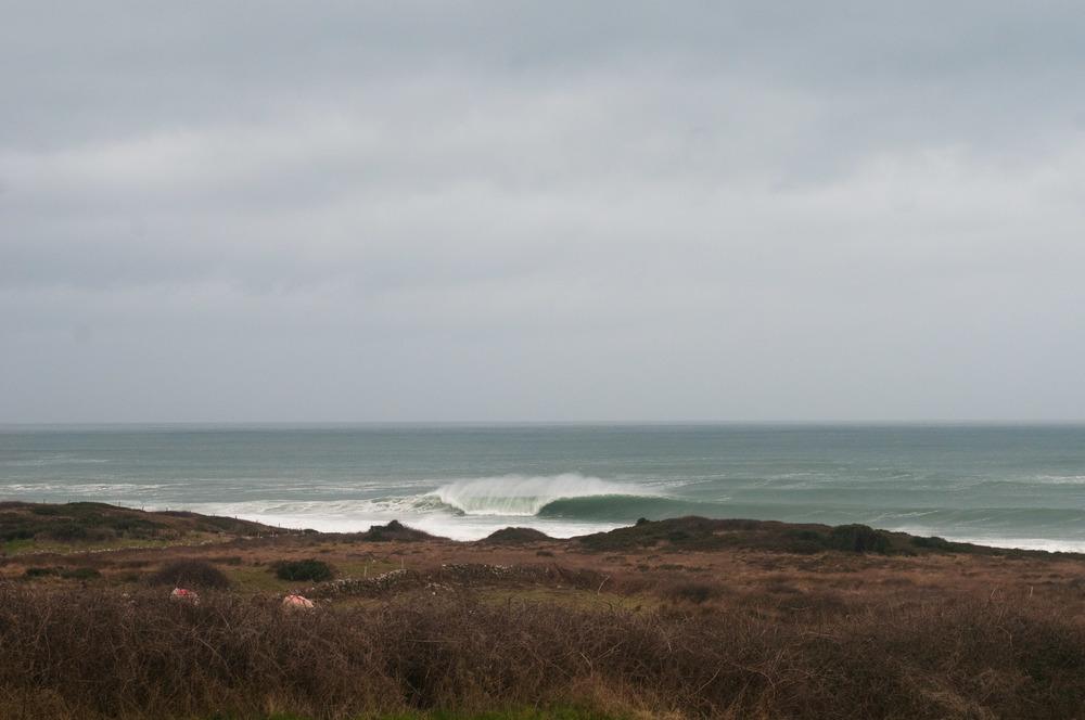 wave_bog.jpg