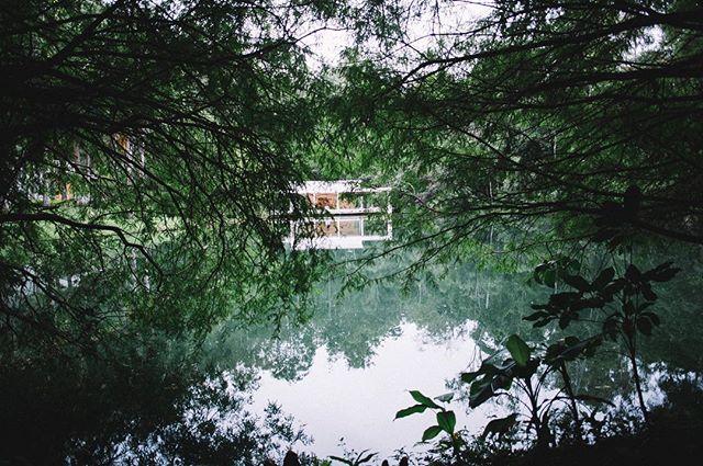 não se esqueçam de passar no blog e conferir as fotos que fiz na nossa visita ao @inhotim! ☺️🌿 | www.camillasoares.com/blog