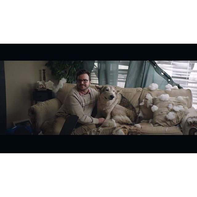 Bad puppy . . . #arri #somewheremagazine #alexamini #cooke #cookeanamorphic #ifyouleave #myfeatureshoot #imaginarymagnitude #dreamermagazine #thinkverylittle #portbox #lensculture #moodygrams #nowherediary #commercial #cinematography #dop #framegrab