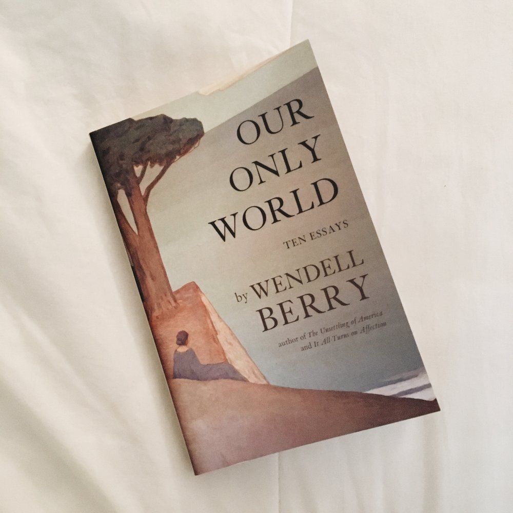my reads rachel a dawson our only world ten essays by wendell berry