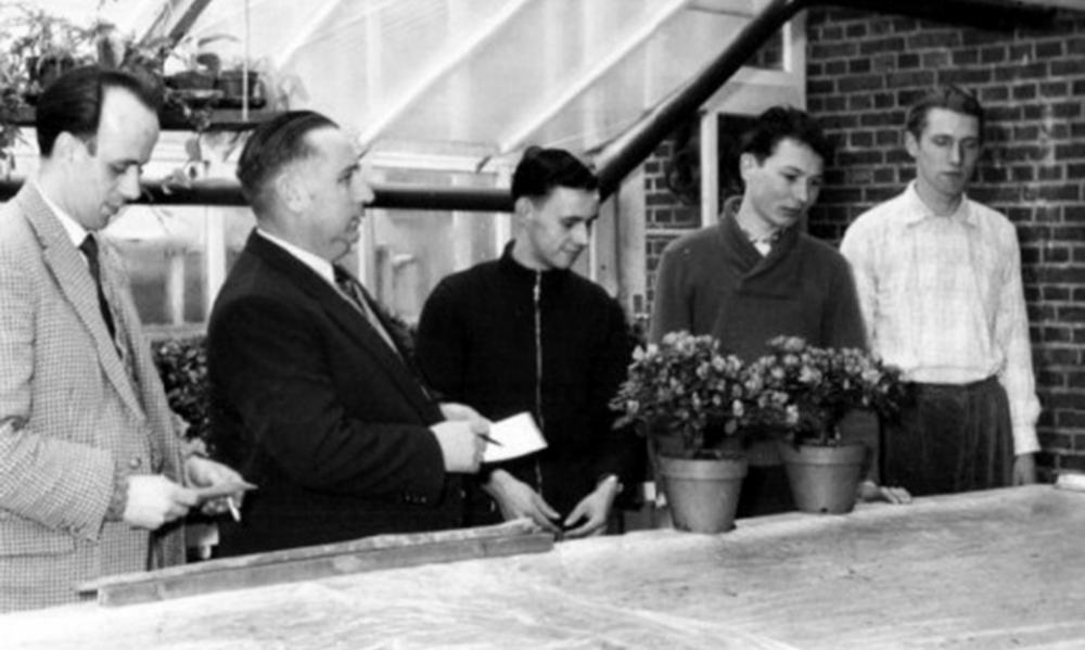 Opa Herbert als strenger Prüfer 1950er Jahre.