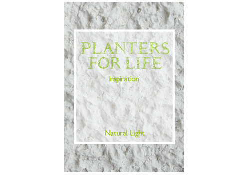 Planters for Life – natural light