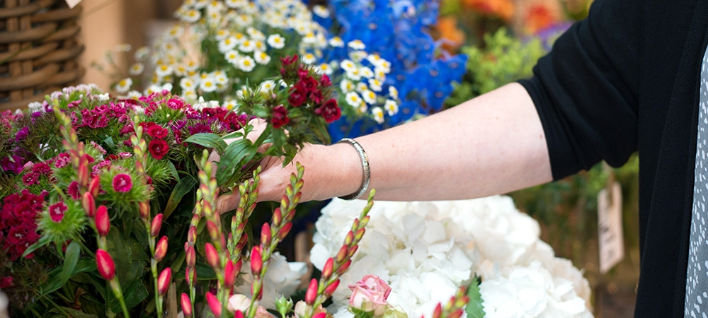 Blumen Auswahl