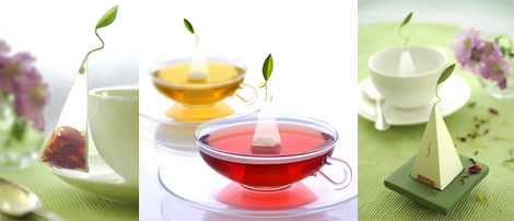 Tea Forte Wholesaler - Wholesale - Distribute