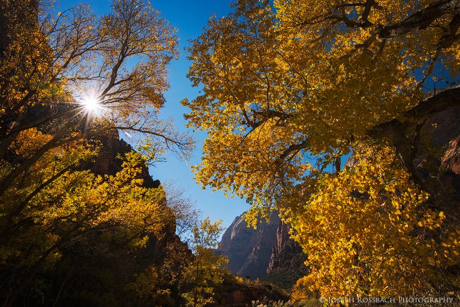canyon-glow.jpg