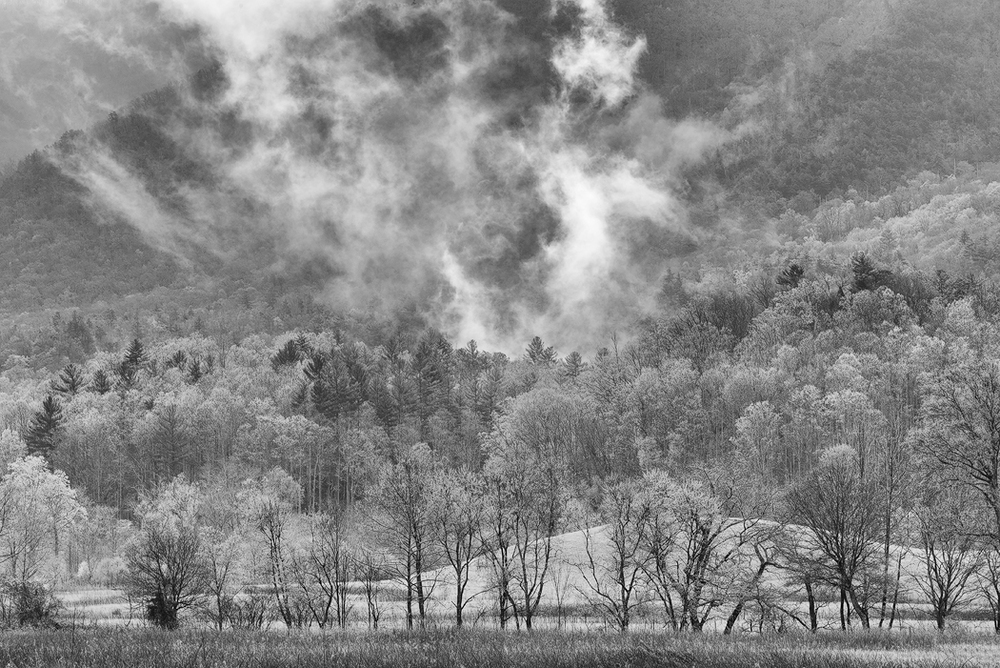 smoke-rising-cades-cove-bw.jpg