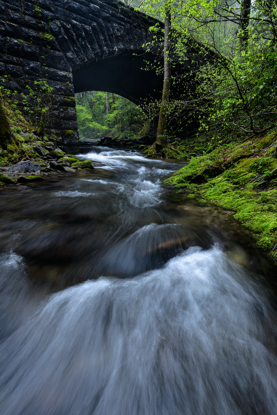 under-the-bridge-great-smoky-mountains.jpg