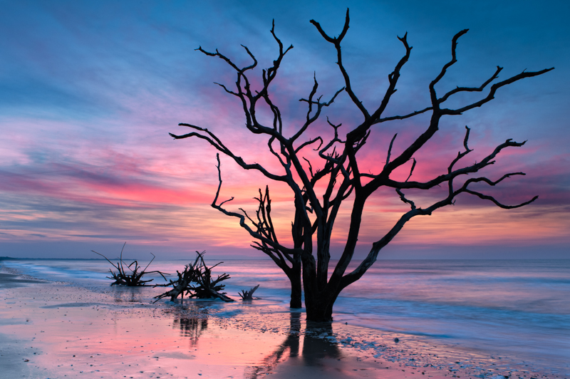 Bone Yard Bay, Edisito Island, SC.JPG