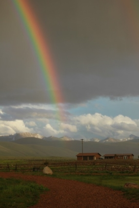 pintlar-pot-of-gold.jpg