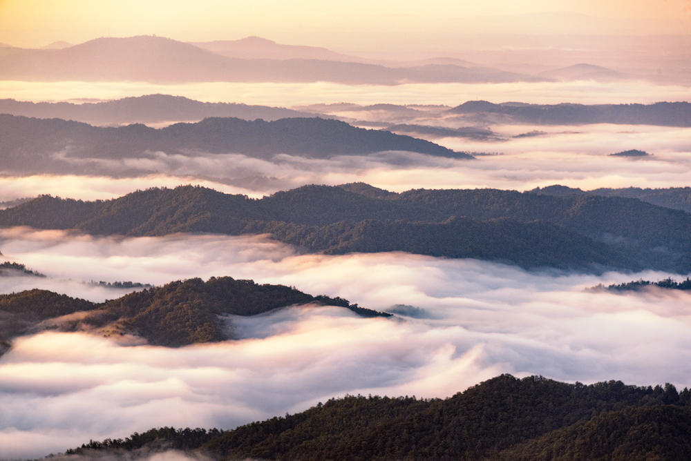 Ridges and fog at sunrise, Blue Ridge Parkway © Kate Silvia