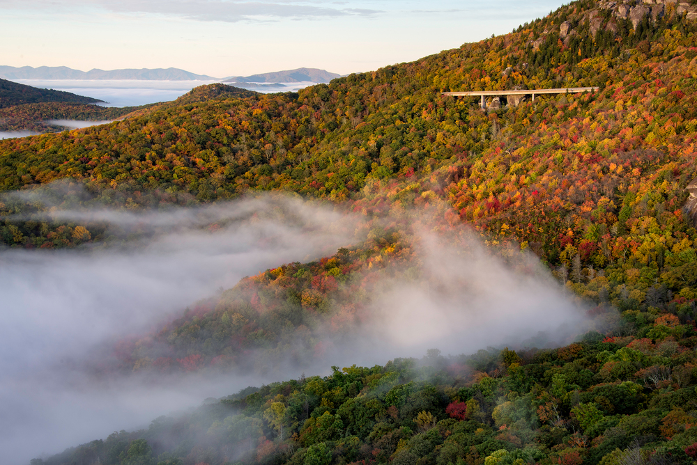 Linn Cove Viaduct and fog © Kate Silvia