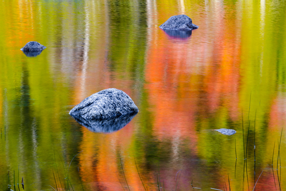 Autumn in Acadia National Park - October 9-12, 2016 - 1 Space Remaining