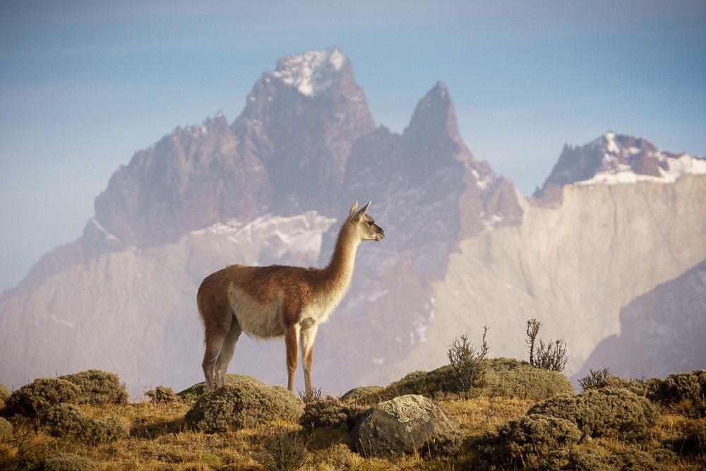 PatagoniaPhotoTour020.jpg