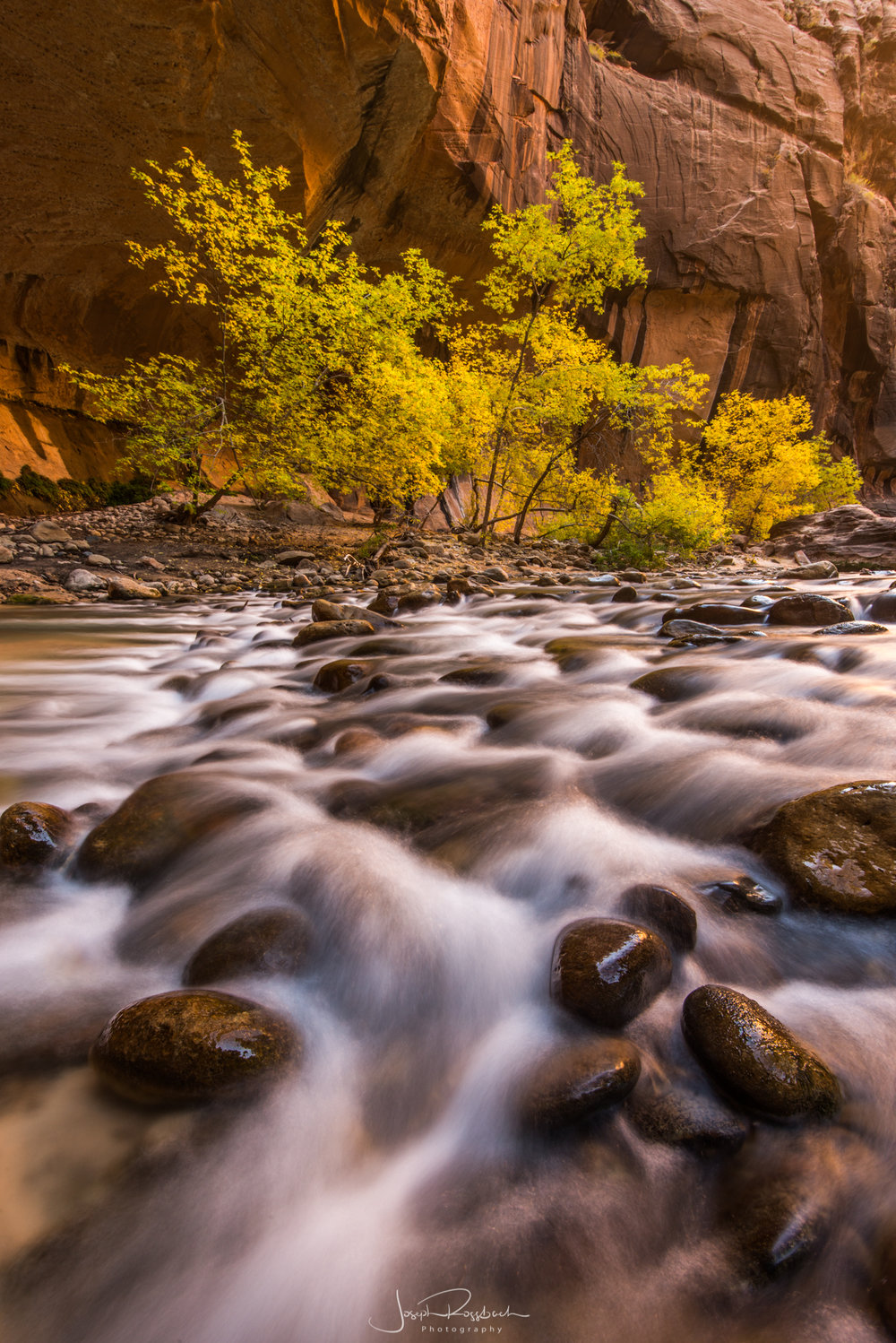 Autumn in Zion - Zion NP, Springdale, UTNovember 4-8, 2019 | $1,595.00 $500 Due At Registration
