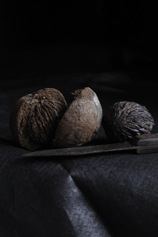 wild black walnuts