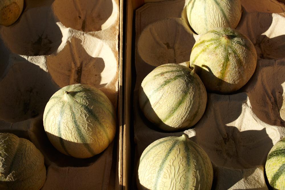 Melons. Market Nerac .