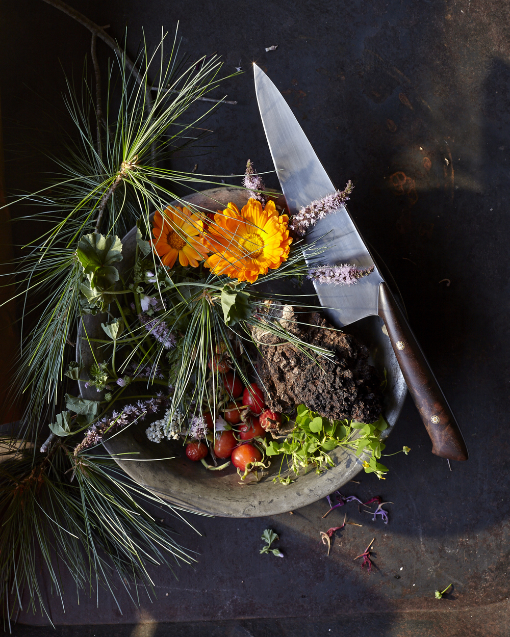 140830_PINES_TABLEONTEN_foraged-2859.jpg