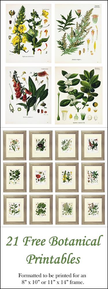 pinterest-floral-printable-image_31.png