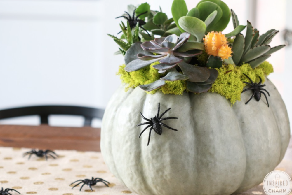 from  Garden Lovers Club  pumpkin flower containers