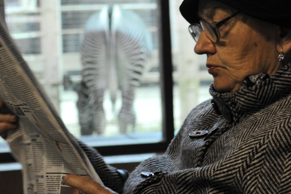 A woman reads newspaper in the Moscow zoo, Russia.
