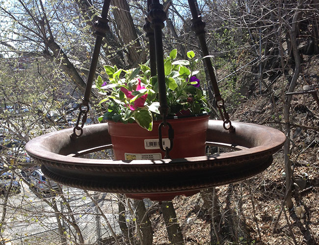 After - light fixture gets a second career as a planter