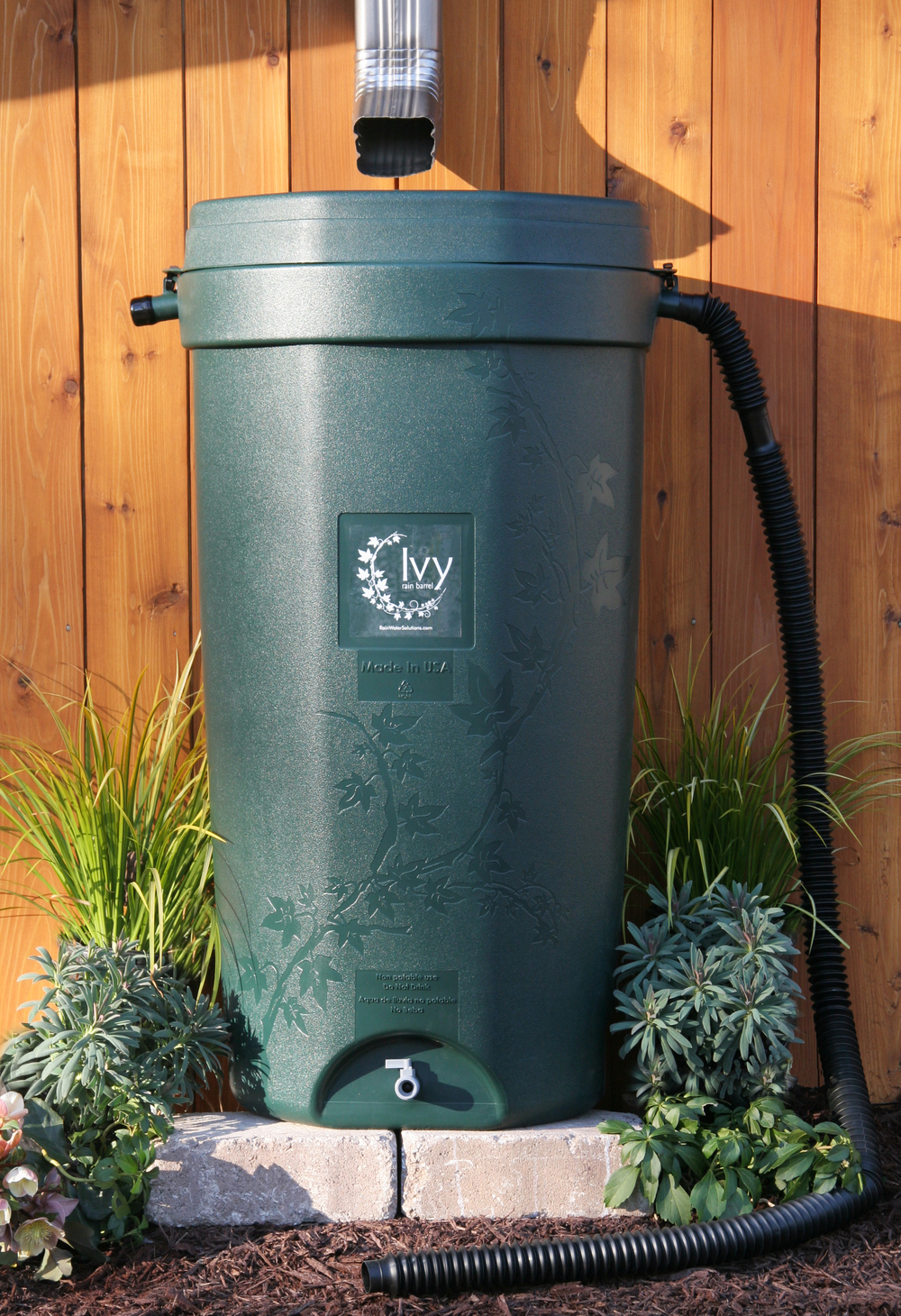 The Ivy rain barrel holds 50 gallons.  Public price $96.99 / BBR member price $87.99.  In stock at Boston Building Resources, 100 Terrace Street.  Hours & Directions