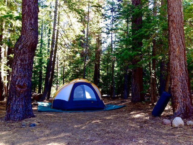 Camping Sugar Pine Point