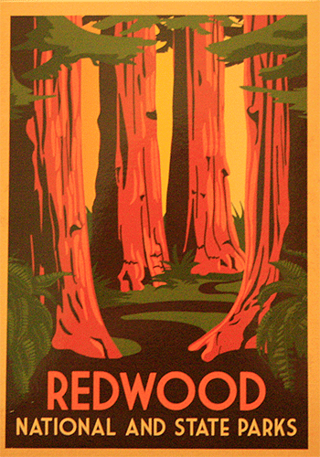 RedwoodsNP