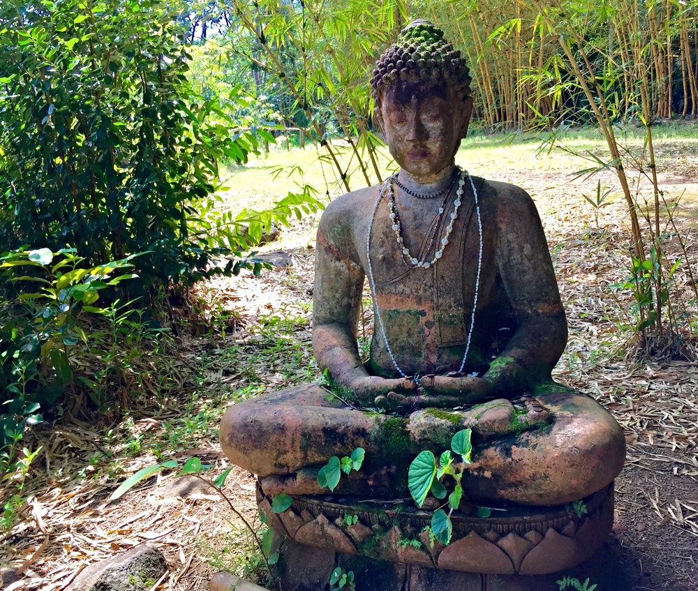 Buddha on the Wai Koa Loop Trail