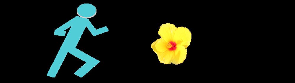 Run Aloha Shops