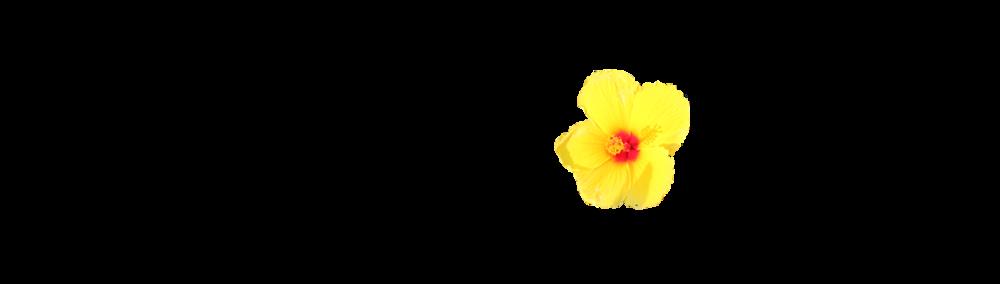 Tri Aloha Shop