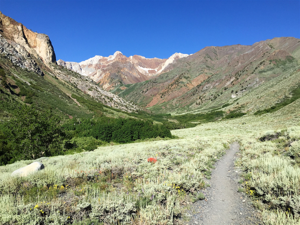 McGee Creek Trail