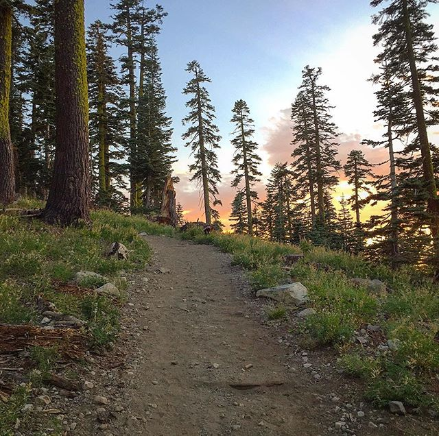 Sunset hike through nature. Exhale with me - ahhhhhhhhhhh. #tahoe #hiking #summer #adventuretime #california #camping