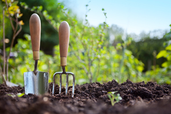 gardening-tools-crave-local.jpg
