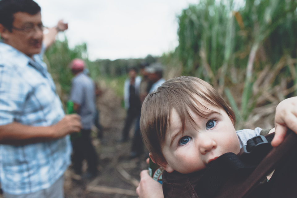 baby in sugarcane fields in belize