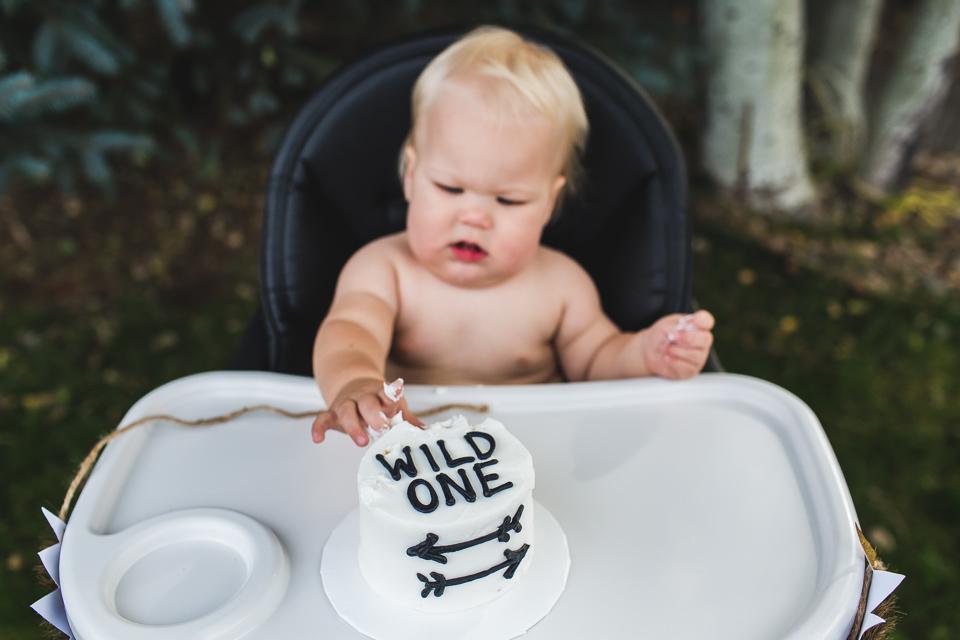 wild one birthday smash cake denver