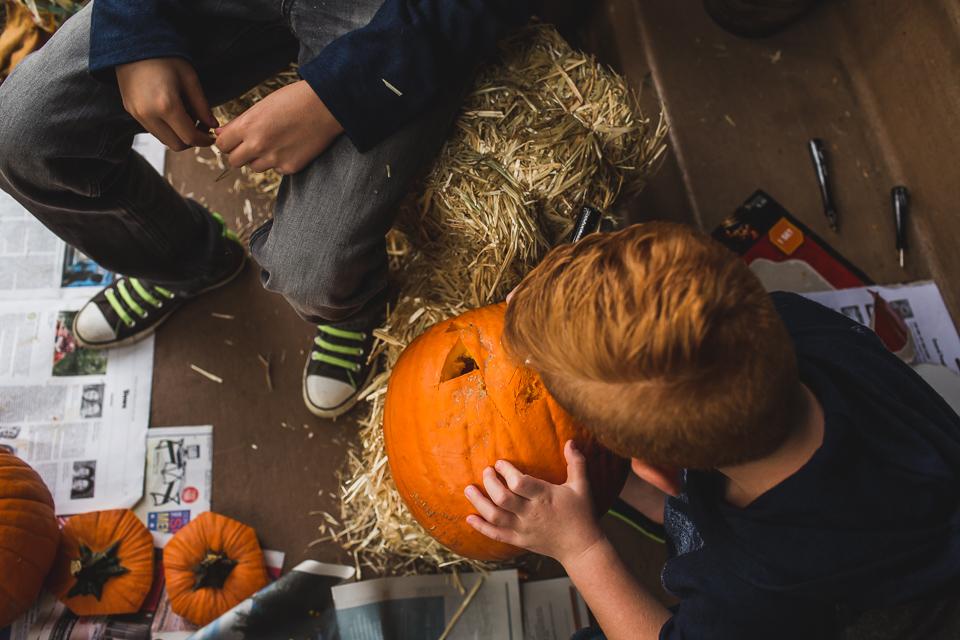 boy carving pumpkin denver colorado