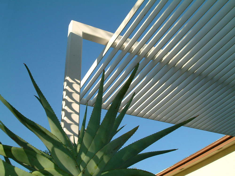 05-a Plant and Trellis small.jpg