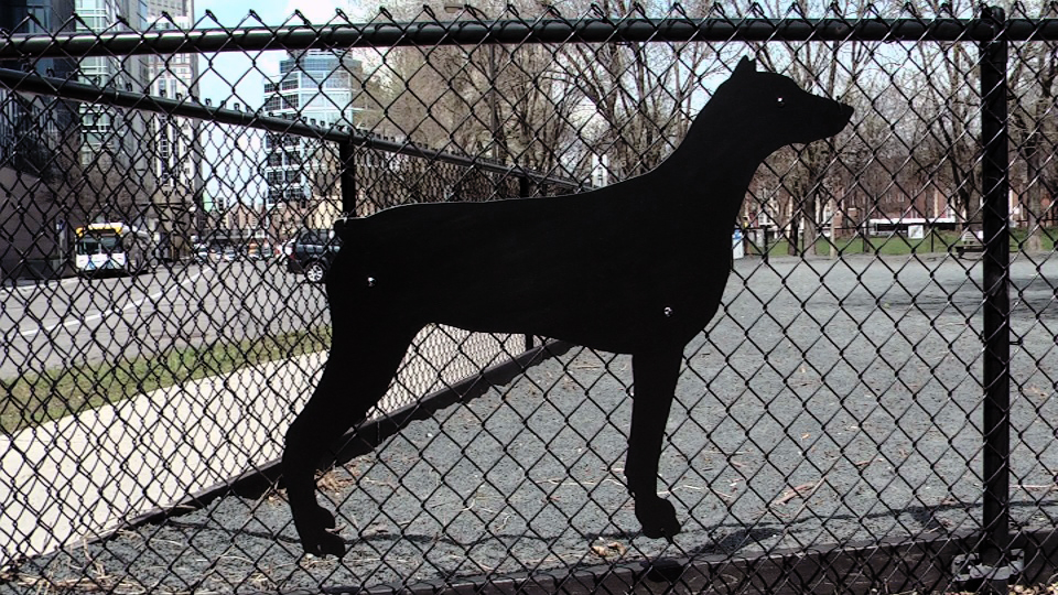 Ruby's Dog Silhouette / Gateway Dog Park / Minneapolis, Minnesota / May 14th, 2014 / Still Photo by Michael Johnson