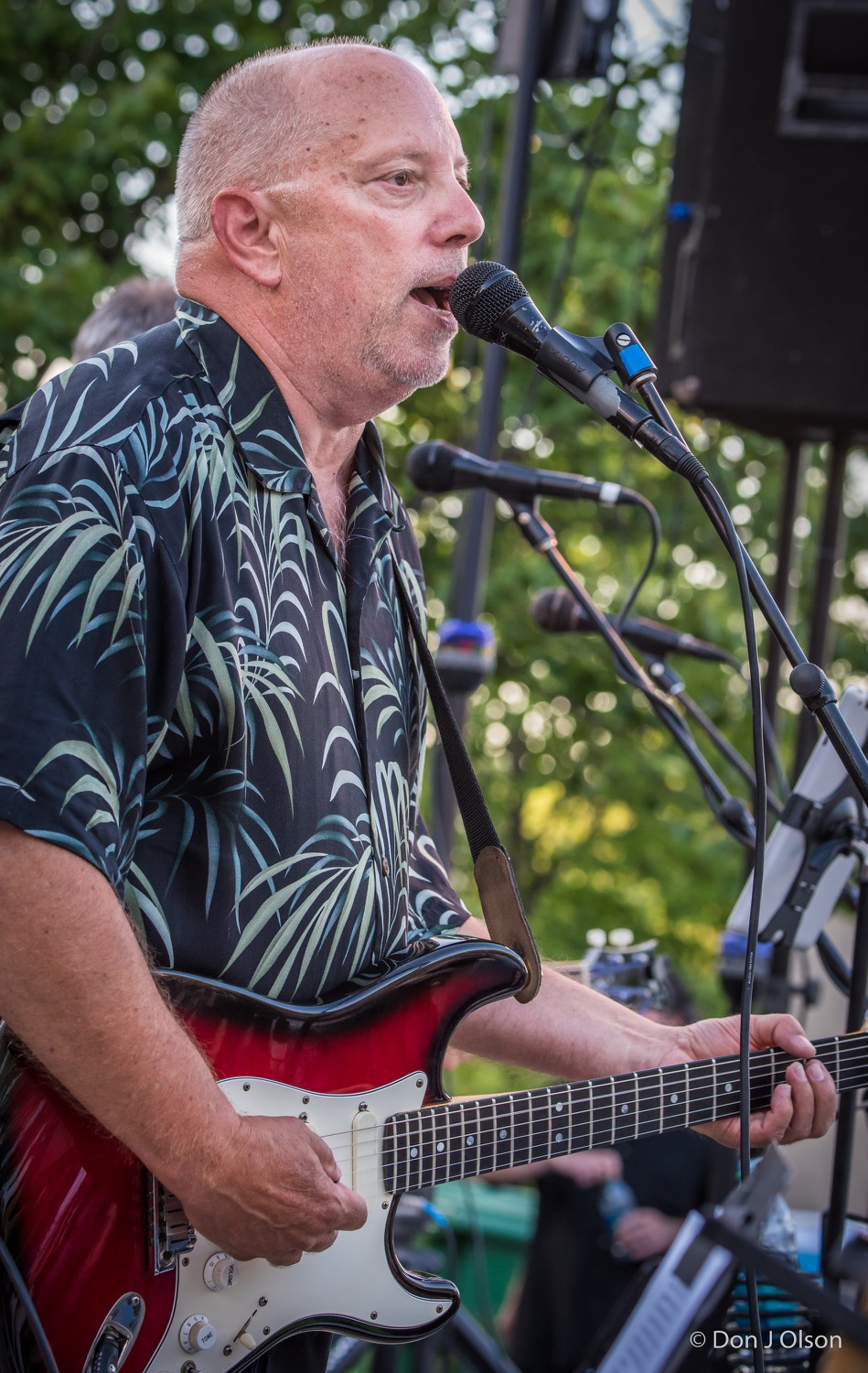 Kenny Krona / The Veterans' Memorial Wolfe Park Amphitheater / St. Louis Park, Minnesota / August 1st, 2015