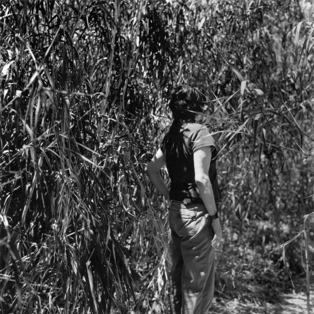 woman in reeds1.jpg